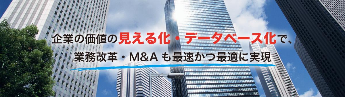 企業の価値の見える化・データベース化で、業務改革・M&Aも最速かつ最適に実現